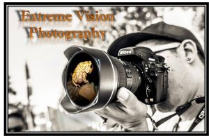 Read more about the article Tips on photography